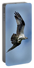 Flying High Portable Battery Charger by Carol Bradley