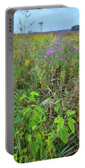 Glacial Park Native Prairie Portable Battery Charger