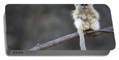 Golden Snub-nosed Monkey Rhinopithecus Portable Battery Charger