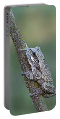 Gray Tree Frog Portable Battery Charger