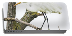 Portable Battery Charger featuring the photograph Great Egret by Ricky L Jones