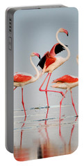 Greater Flamingos Phoenicopterus Roseus Portable Battery Charger