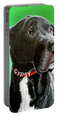 Gypsy Portable Battery Charger