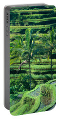 Indonesia, Bali Portable Battery Charger