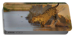 Jaguar Portable Battery Charger