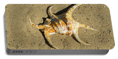 Portable Battery Charger featuring the photograph Lambis Arthritica Spider Conch by Frank Wilson