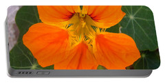 Portable Battery Charger featuring the photograph Nasturtium by Stephanie Moore