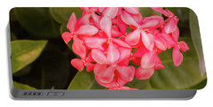 Pink Flower Portable Battery Charger by James Gay