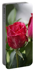 Portable Battery Charger featuring the photograph Rose by Heidi Poulin