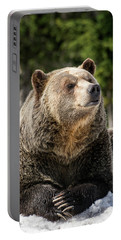 The Grizzly Bear Grinder Portable Battery Charger