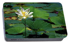 Portable Battery Charger featuring the photograph The Lotus Pond by Paul Mashburn