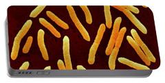 Toxigenic Escherichia Coli O145, Sem Portable Battery Charger