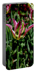 Tulip Portable Battery Charger