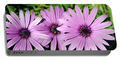 The African Daisy 2 Portable Battery Charger