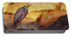 White-faced Heron At The Beach Portable Battery Charger