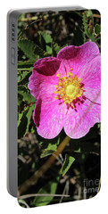 Portable Battery Charger featuring the photograph Wild Rose by Ann E Robson