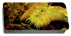 Sea Urchins Portable Battery Charger