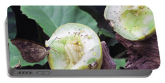 Butterfly Buffet Portable Battery Charger