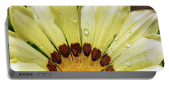 Portable Battery Charger featuring the photograph Nice Gazania by Elvira Ladocki