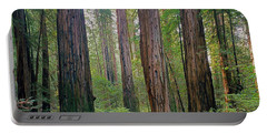 Portable Battery Charger featuring the photograph 2b6391 Armstrong Redwoods Ca by Ed Cooper Photography