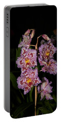 Cattleya Style Orchids Portable Battery Charger