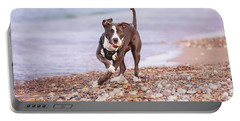 Portable Battery Charger featuring the photograph American Pitbull Terrier by Peter Lakomy