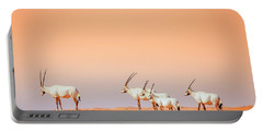 Portable Battery Charger featuring the photograph Arabian Oryx by Alexey Stiop