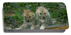 Arctic Wolf Canis Lupus Tundrarum Portable Battery Charger