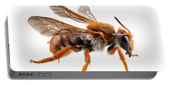 Bee Species Anthidium Sticticum Common Name Mason Or Potter Bee  Portable Battery Charger