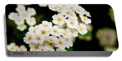 Portable Battery Charger featuring the photograph Bridal Veil Spirea by Brenda Jacobs