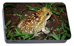 Portable Battery Charger featuring the photograph Cane Toad by Breck Bartholomew
