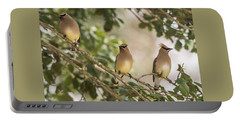 3 Cedar Waxwings  Portable Battery Charger