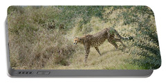 Portable Battery Charger featuring the photograph Descent by Fraida Gutovich