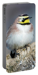 Portable Battery Charger featuring the photograph Horned Lark by Norman Hall