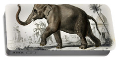 Indian Elephant, Endangered Species Portable Battery Charger by Biodiversity Heritage Library