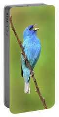 Indigo Bunting Portable Battery Charger by Alan Lenk