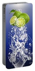 Lime Splash Portable Battery Charger