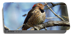 Portable Battery Charger featuring the photograph Northern Flicker Woodpecker by Robert L Jackson