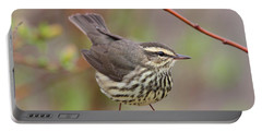 Northern Waterthrush Portable Battery Charger