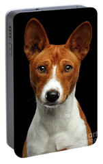 Pedigree White With Red Basenji Dog On Isolated Black Background Portable Battery Charger by Sergey Taran