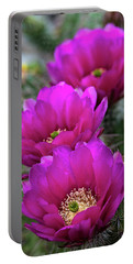 Portable Battery Charger featuring the photograph Pink Hedgehog Cactus  by Saija Lehtonen