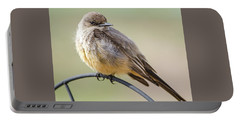 Say's Phoebe Portable Battery Charger