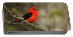 Scarlet Tanager Portable Battery Charger by Alan Lenk