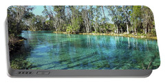 Western View Of Three Sisters Springs Portable Battery Charger