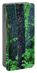 Portable Battery Charger featuring the photograph 3 Trees by Joanne Smoley