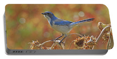 Western Scrub-jay Portable Battery Charger
