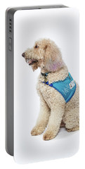 3010.057 Therapet Portable Battery Charger