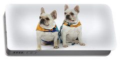 3010.062 Therapet Portable Battery Charger