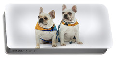 3010.062 Therapet Portable Battery Charger by M K  Miller