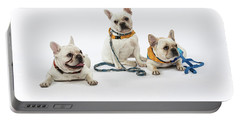 3010.064 Therapet Portable Battery Charger
